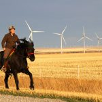 Heidi Eijgel, rides her horse Luna, past the turbines of Summerview wind farm.