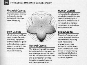 Five Capitals of the Well-Being Economy